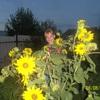 Ольга, 32, г.Варна