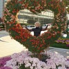 Ирина, 65, г.Уссурийск