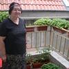 эльвира, 71, г.Варна