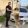 Elcin, 34, г.Баку
