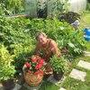 Юлия, 63, г.Котлас