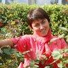 ELVINA, 35, г.Алушта