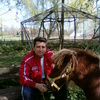 Roki, 54, г.Нови-Сад